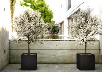vierkant betonnen plantenbak